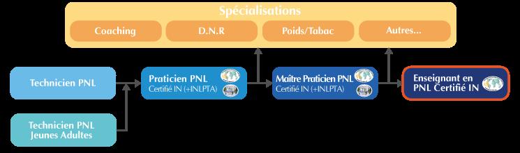 Oganigramme formation Enseignant PNL Lyon